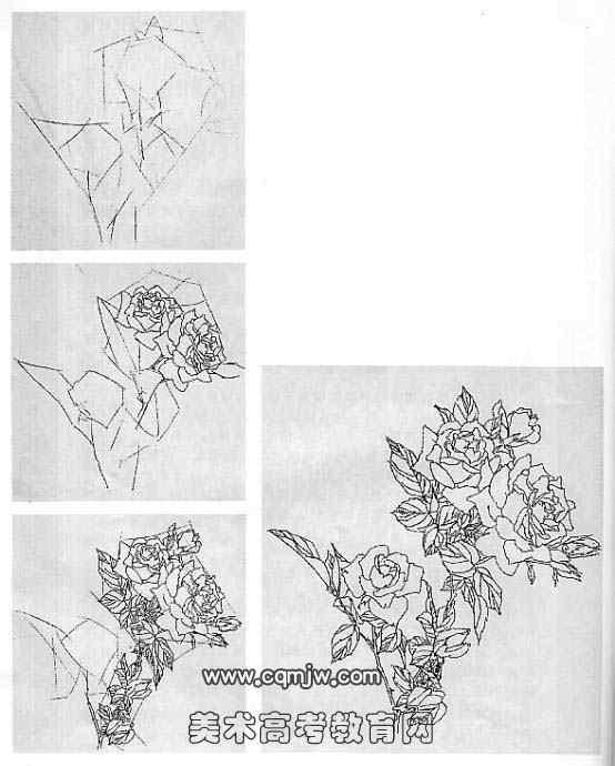 花卉速写的画法
