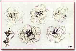 教育频道 国画教程 >> 教程正文    浅粉色芙蓉,可用淡墨勾勒花和纹络图片