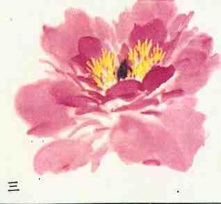 写意牡丹花朵及花叶画法步骤